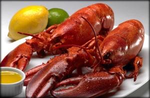 prod-img-lobster
