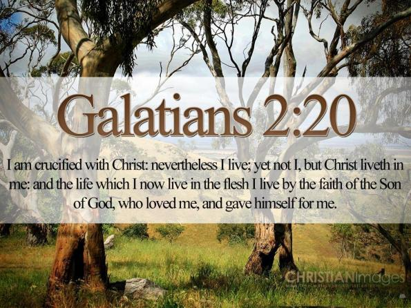 Bible-Verses-On-Love-Galatians-2-20-21-Trees-HD-Wallpaper