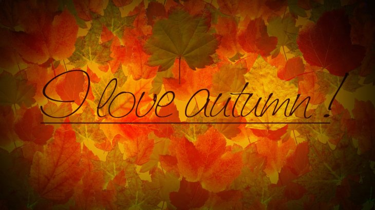 i_love_autumn_by_anjunabeats9-d4asq8t