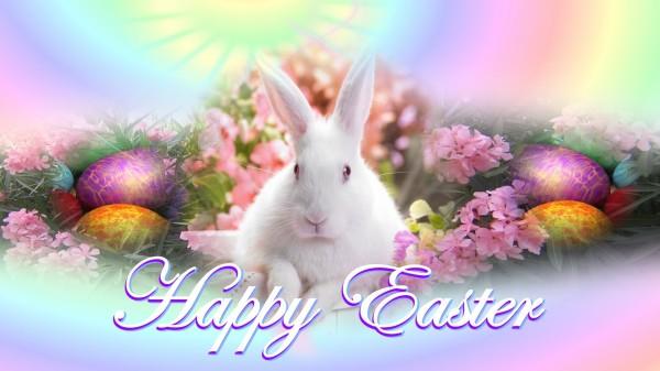 Happy-Easter-Bunny-2013