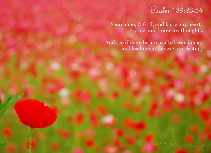 psalm-1392324_2620_1600x1200