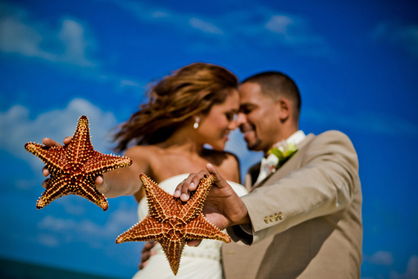 starfish-point-wedding