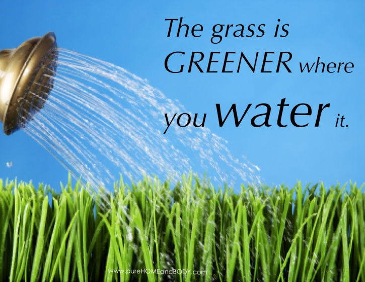 a-the-grass-is-greener-quote1