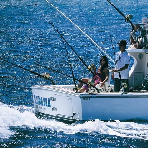 Summer escape to bora bora smart christian woman magazine for Bora bora fish
