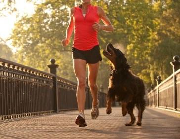 dog-running-partner2