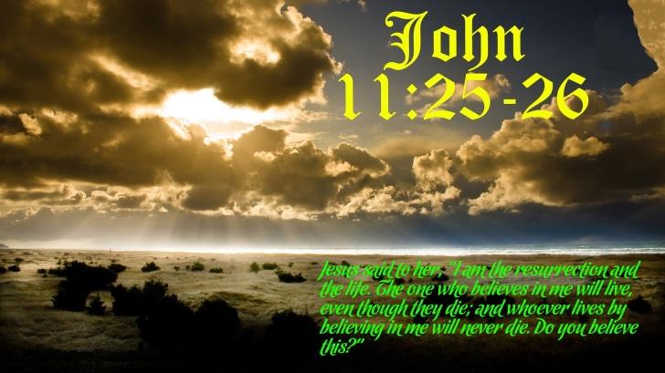 John_1125_26