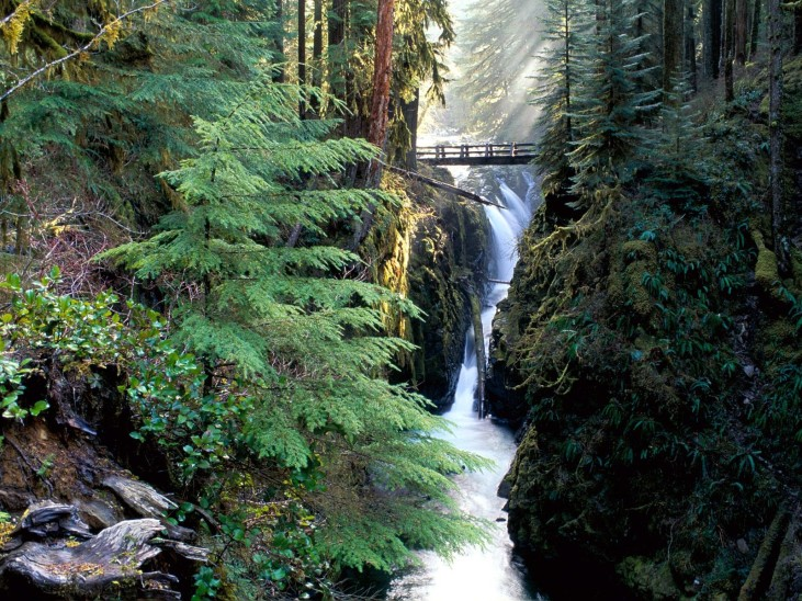 Olympic National Park 01