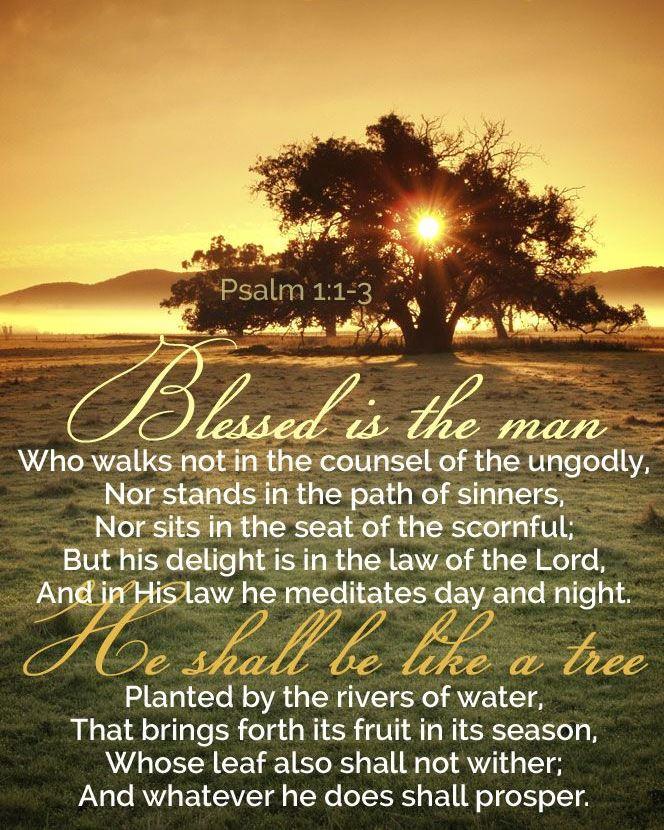 psalm1-1-3