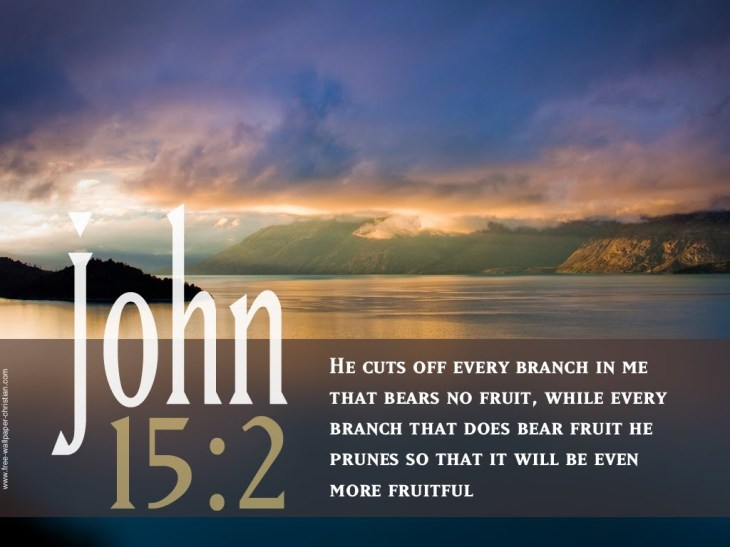 john-15-2-christian-desktop-bible-verse-wallpaper