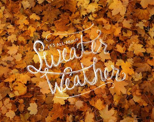 fall-guote-leaves-season-favim-com-2133116