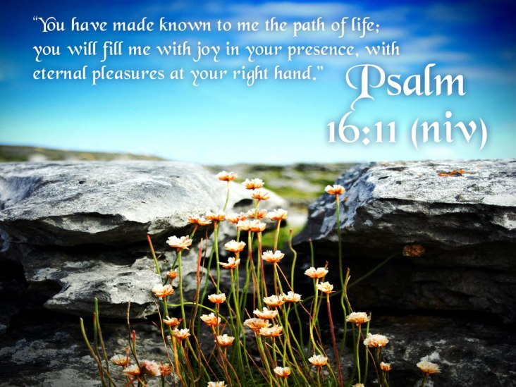 psalm-16-11-nature-background