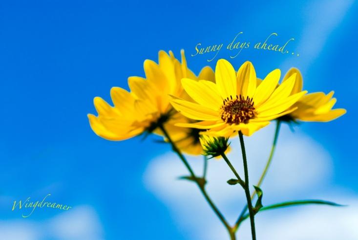 sunny-days-ahead
