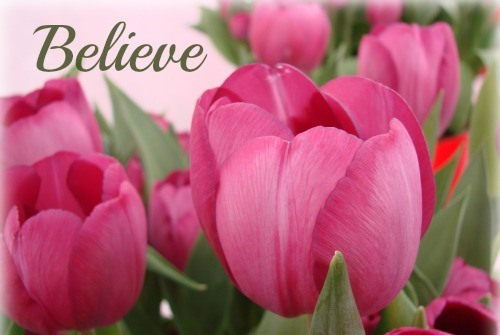 believe-tulips-blog-c2a9cindyrippe2013
