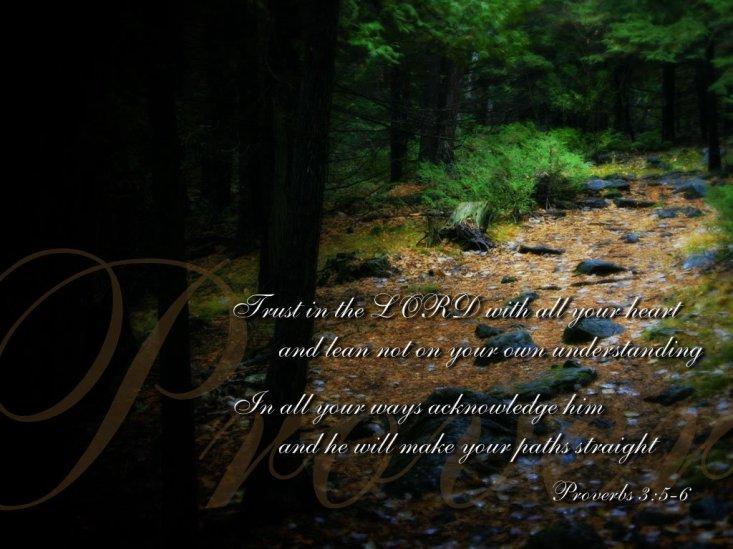proverbs-3-5-6-bible-verse